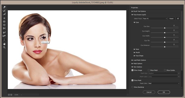 face-eye-size-aware-liquify-