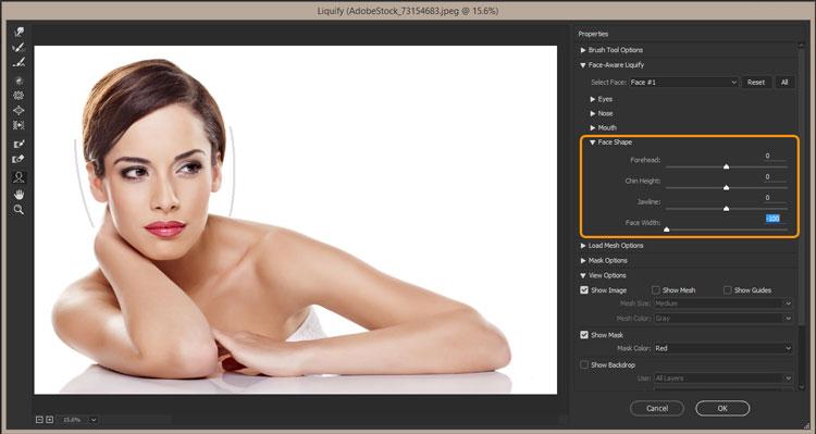 face-shape-aware-liquify-