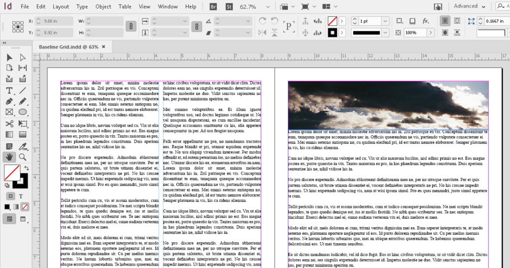 Using the Baseline Grid with InDesign | SkillForge