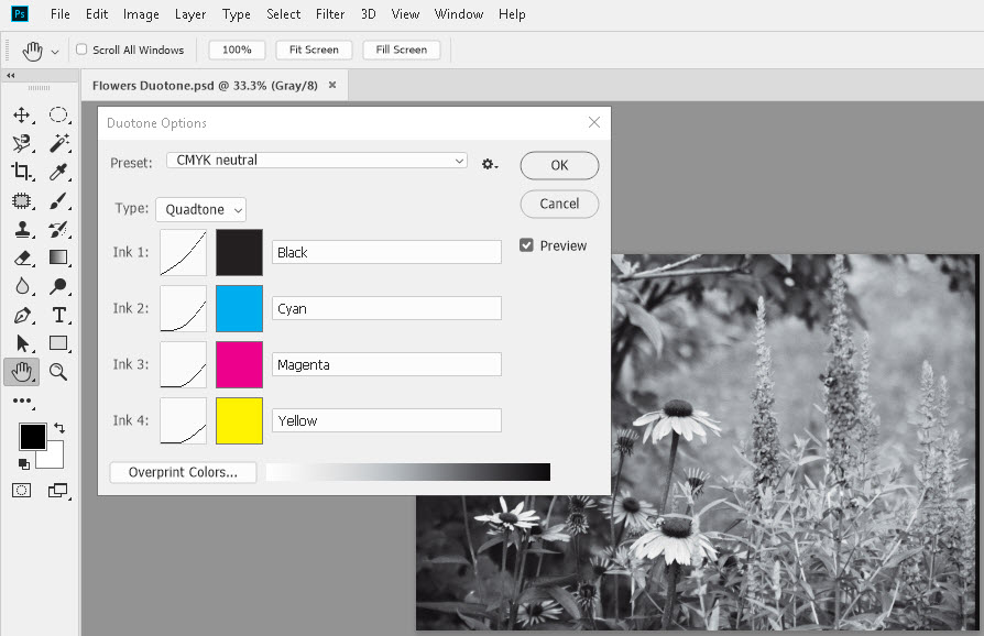 How to use duotone mode in photoshop skillforge although one might want to do brightness and contrast adjustment beforehand duotone mode allows some artistic things to happen to an image malvernweather Images
