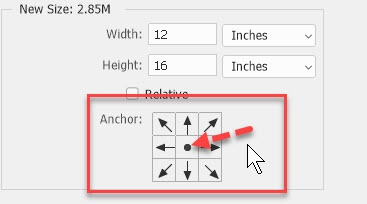 Working with Image Size and Canvas Size in Photoshop | SkillForge