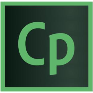 Adobe Captivate Training